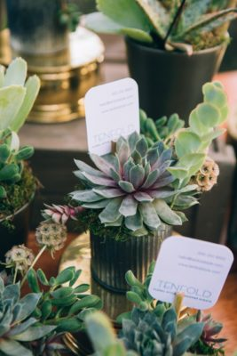 succulant arrangement bar TENFOLD Style